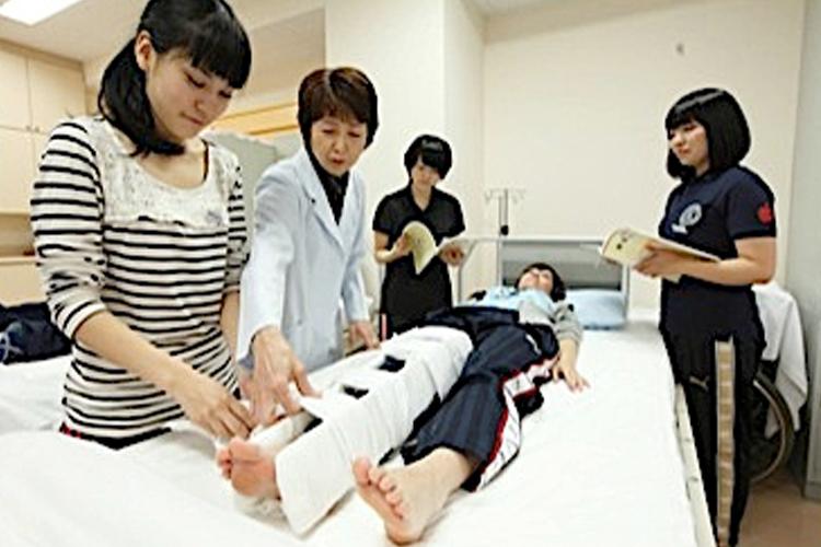 弘前大学 教育学部 養護教諭養成課程 実習 脚
